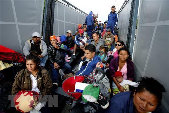 Kết quả hình ảnh cho Mỹ bắt giữ hàng trăm người di cư bất hợp pháp